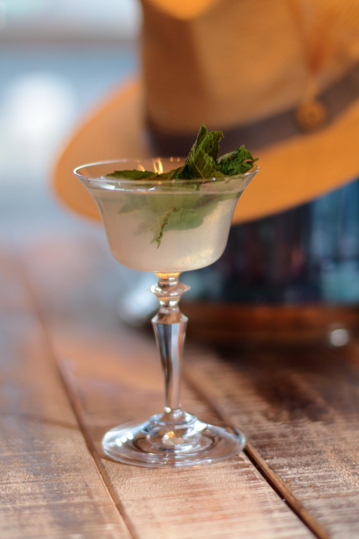 Mint Daiquiri Drink Recipe